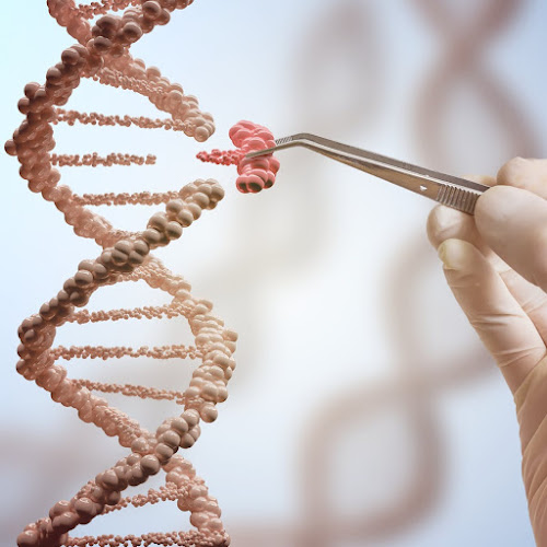 A change in the sequence of bases in DNA or RNA is called a mutation
