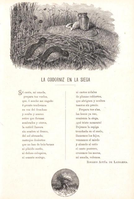 Álbum poético. Colección de composiciones inéditas... p. 111