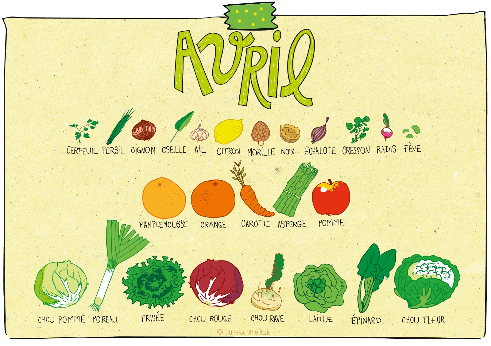 aada1a827fe Avril - Calendrier des fruits et légumes