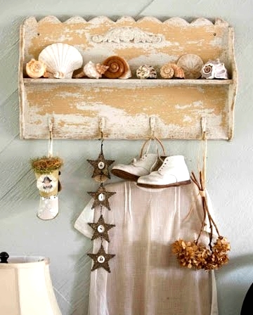 seashell collection shelf