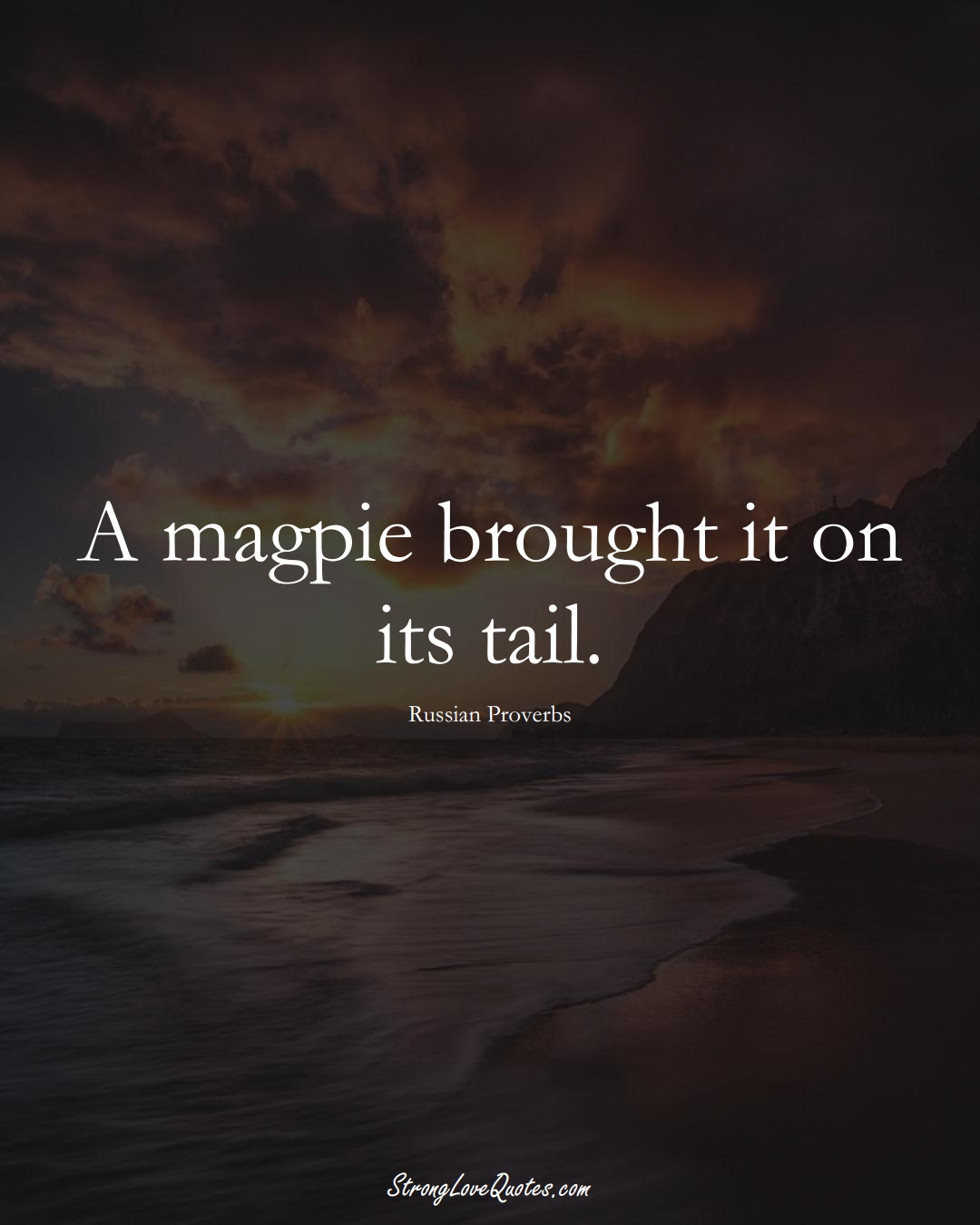A magpie brought it on its tail. (Russian Sayings);  #AsianSayings
