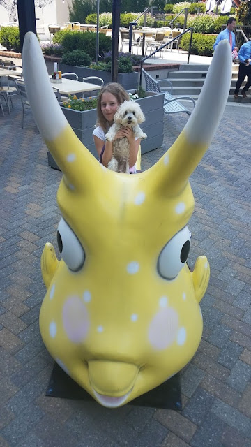 Dogs can dine at Cowfish on the patio at North HIlls