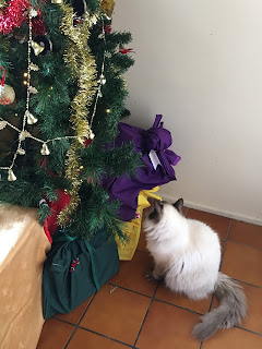 Princess, looking at Christmas tree