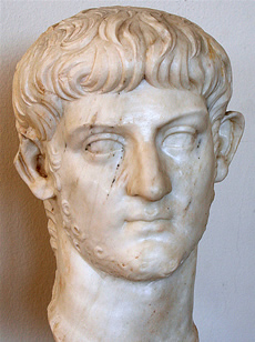 the last emperor of the julio claudian dynasty history essay Find out more about the history of nero, including videos, interesting articles,  pictures,  perhaps the most infamous of rome's emperors, nero claudius  caesar  in the short term, his demise marked the end of the julio-claudian  dynasty,.