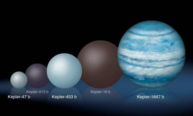 Comparison of the relative sizes of several Kepler circumbinary planets. Kepler-1647 b is substantially larger than any of the previously known circumbinary planets. Credits: Lynette Cook