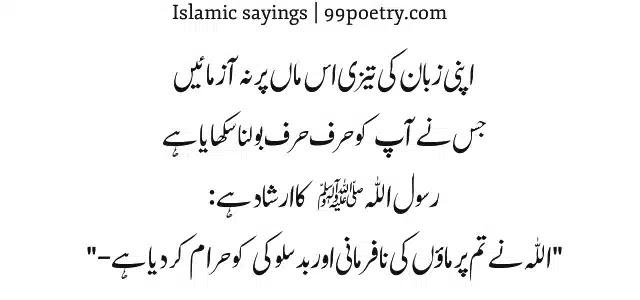 Apni Zubaan ki Tezi is maa pa na azmain-mother saying urdu