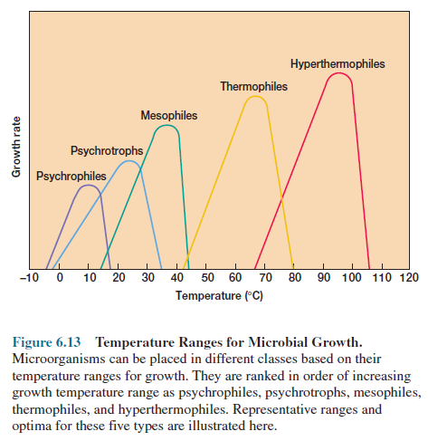 Temperature Ranges for Microbial Growth