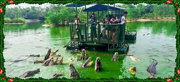 Vương quốc voi ở Chonburi, Thái Lan