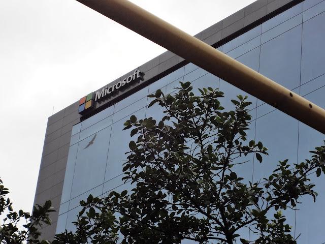 Microsoft(マイクロソフト)社のビル画像