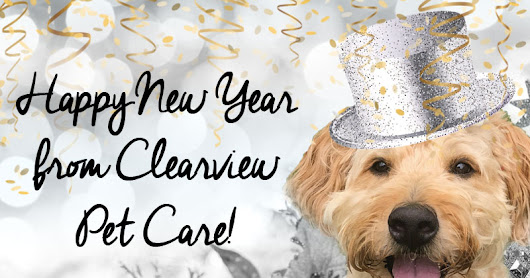 New Year's Tips For Your Pet