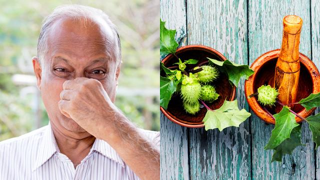 obat tradisional bau mulut