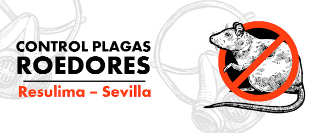 control plagas roedores Sevilla