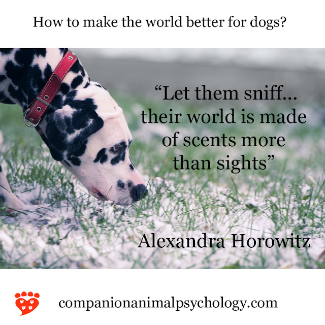 An interview with Alexandra Horowitz about Our Dogs, Ourselves