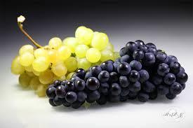 Les avantages du raisin sur la santé humaine
