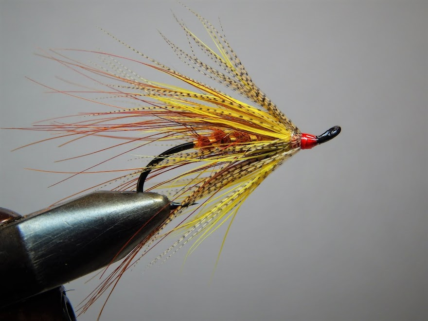 """Trout Spey"""