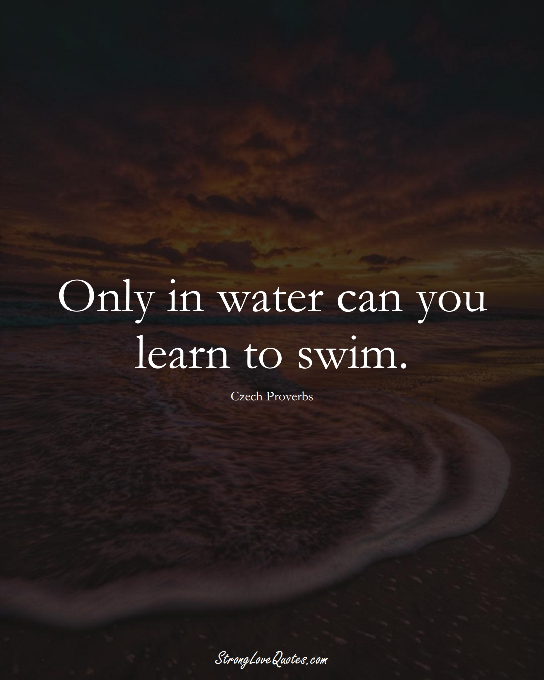 Only in water can you learn to swim. (Czech Sayings);  #EuropeanSayings