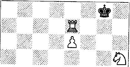 pola checkmate cantik