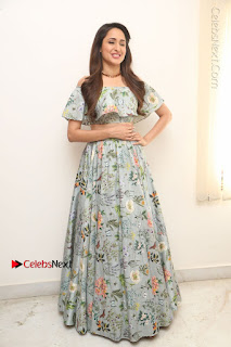 Actress Pragya Jaiswal Stills in Floral Dress at turodu Interview  0171.JPG