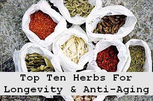 https://foreverhealthy.blogspot.com/2012/04/top-ten-herbs-for-longevity-anti-aging.html#more
