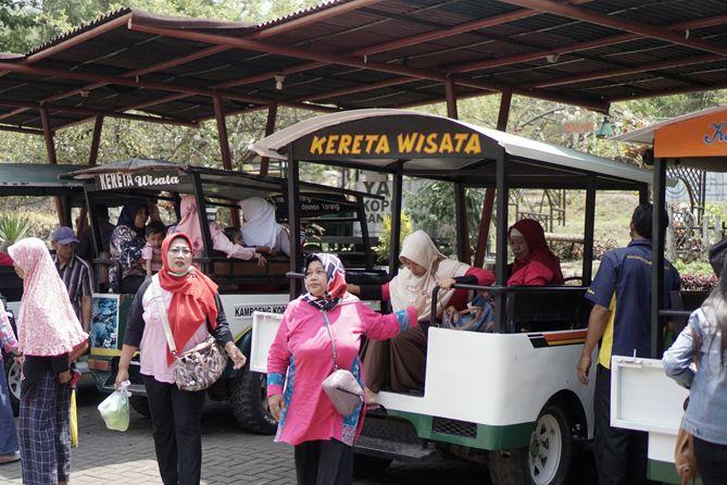 Rombongan wisatawan dari jelajah kebun kopi Banaran
