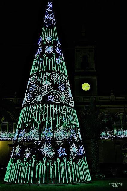 Navidad en la campiña / Blanca Arias
