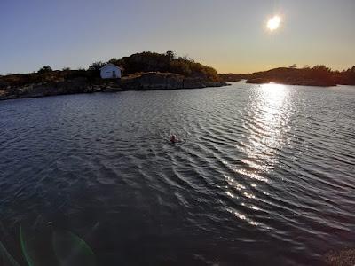 Denken Sie an Schwimmen im Abendsonnenschein.