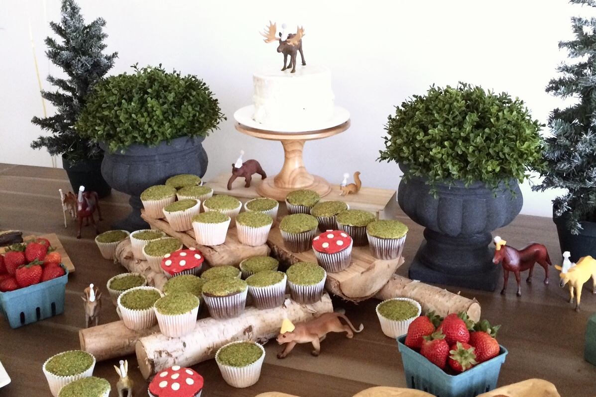 Woodland Birthday Food Ideas