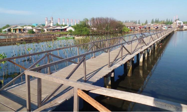 Menikmati Keindahan Alam Jembatan Cinta Tarumajaya di Bekasi