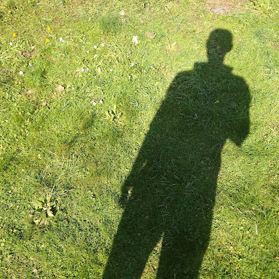 My shadow being cast onto a green lawn