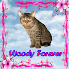 Woody Forever