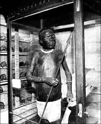 1 - A cruel história do africano que foi dissecado e exposto como um animal em um museu na Europa