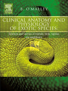 Clinical Anatomy and Physiology of Exotic Species: Structure and function of mammals, birds, reptiles and amphibians 1st Edition