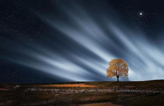 أجمل المناظر الطبيعية في الليل