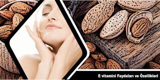 E vitamini Özellikleri