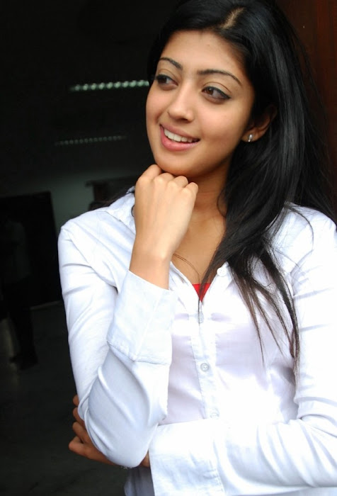 praneetha the girl in white shirtjeans actress pics