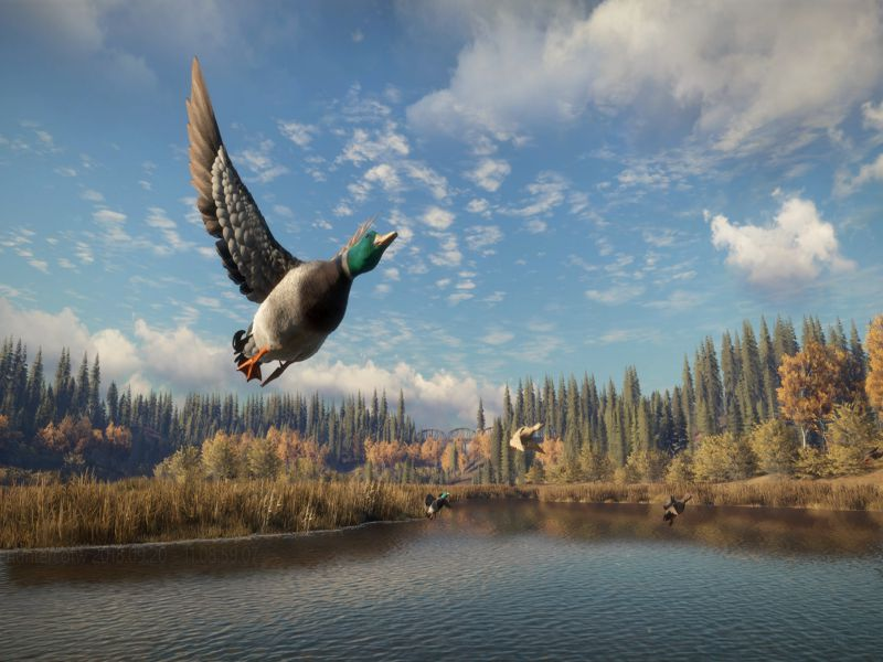 Download theHunter Call of the Wild Free Full Game For PC