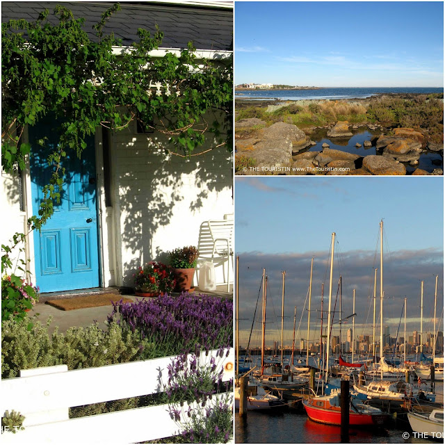 A blue door of a white weatherboard home surrounded by green leaves. Rocks on a beach. Boat harbour with the skyline of a city in the background.