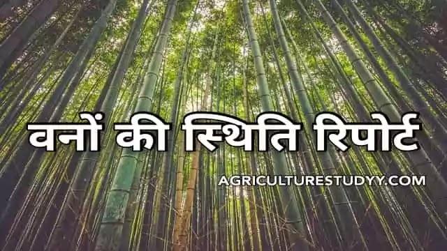 भारत में वनों की स्थिति रिपोर्ट - भारतीय भौगोलिक एवं जनसंख्यात्मक परिवेश, वनों की स्थिति रिपोर्ट 2019-20, वनों के प्रकार, वनों के लाभ, वनों का महत्व,