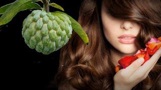 10 Ways To Help Make Hair Strong