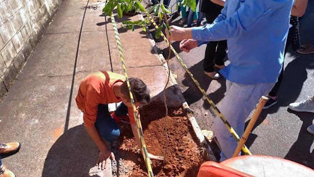 Departamento de Meio Ambiente realiza plantio na Escola Elmira em Cajobi
