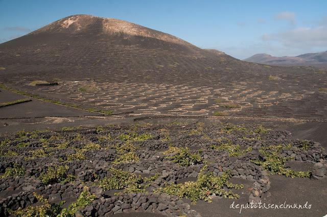 La Geria Lanzarote