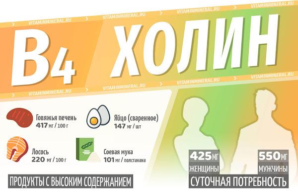 Холин для организма — инфографика