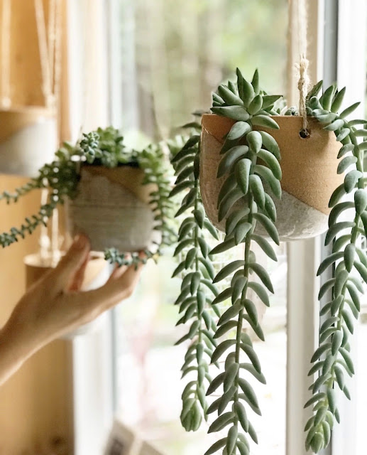 Handmade terracotta and cream ceramic hanging planters