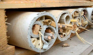 how to make an insect home DIY