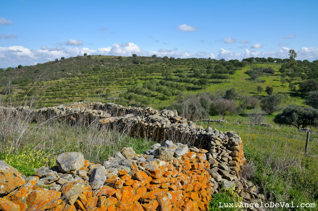 http://fineartamerica.com/featured/antique-stone-wall-of-an-old-farm-angelo-deval.html