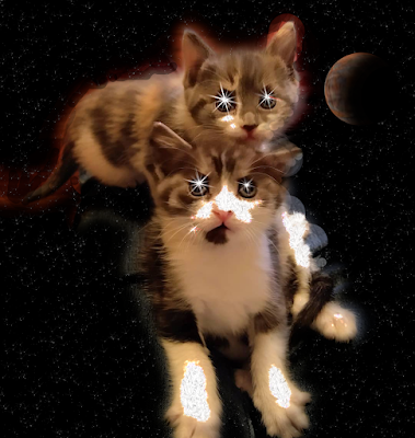 Two sparkling kittens in space
