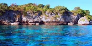 pulau buaya tempat wisata papua barat dengan pantai yangi alami