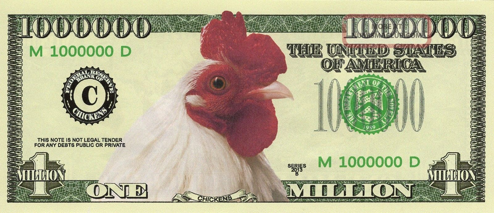 untung bisnis jual beli ayam hias