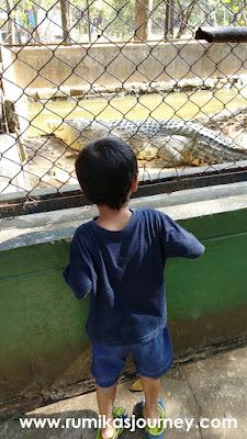 buata muara di jurug solo zoo
