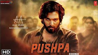 Pushpa Full Movie Download in Hindi 480p filmymeet
